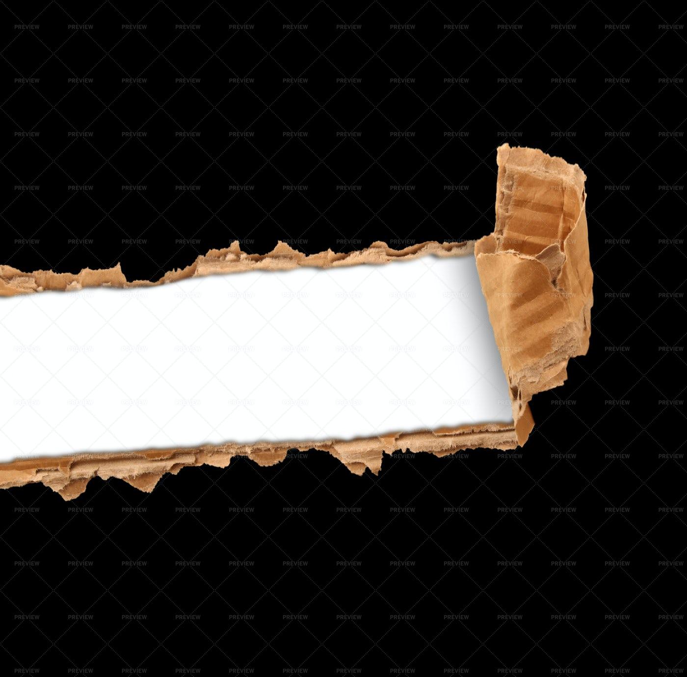 Torn Cardboard: Stock Photos
