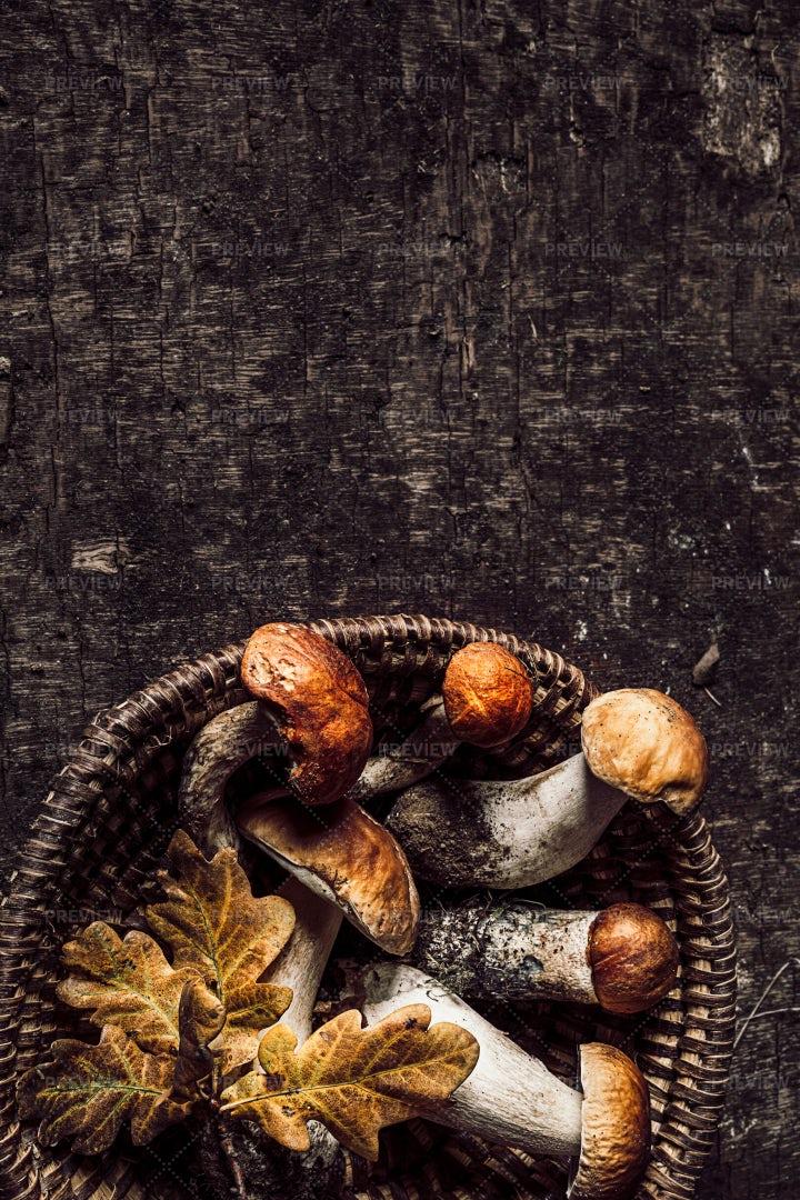 Mushrooms And Yellow Oak Leaves: Stock Photos