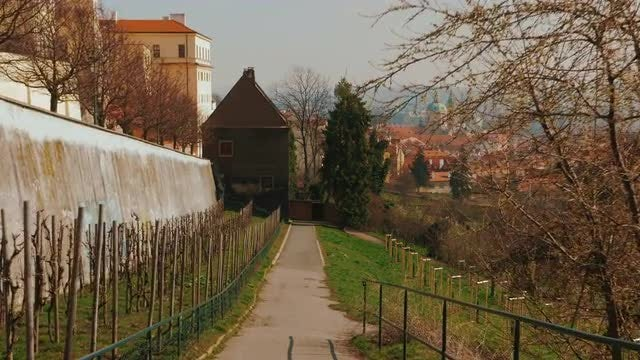View Of Old Town Prague From Hillside Orchard: Stock Video