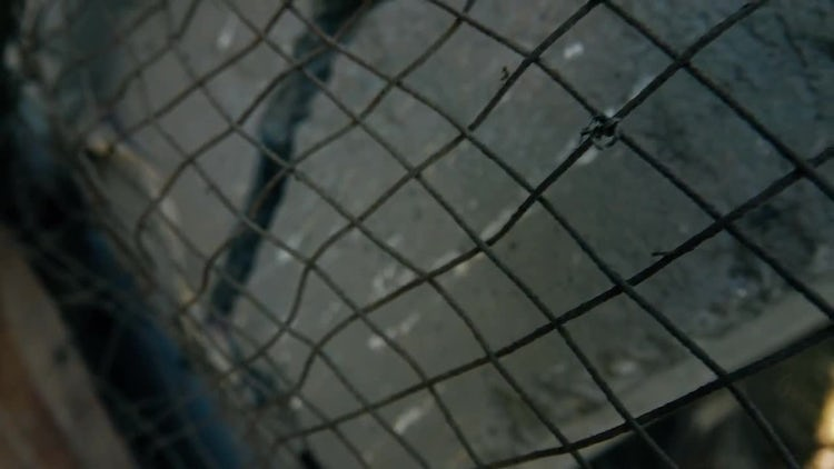 Tilting Shot Of Wire Mesh: Stock Video