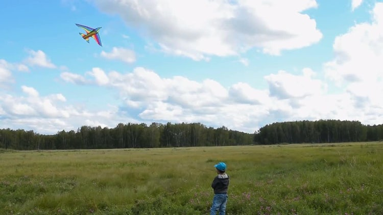Child Flying A Kite: Stock Video