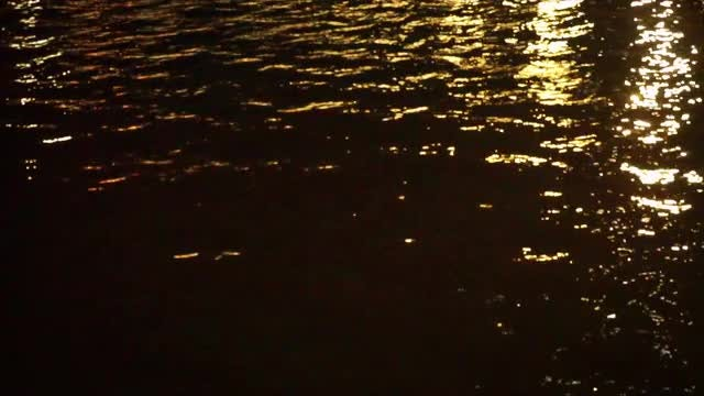Golden Lights Reflected In Water: Stock Video
