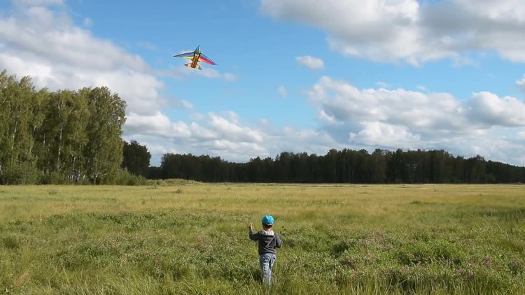 Little Child Flying A Kite: Stock Video