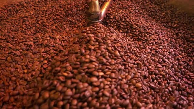 Coffee Beans In Roasting Machine : Stock Video
