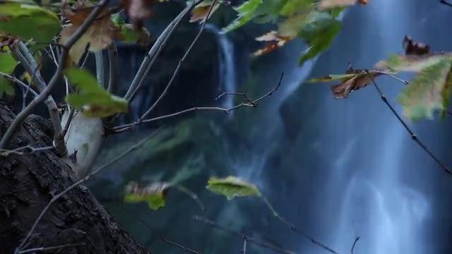 Close-up Shots Of Natural Waterfalls : Stock Video