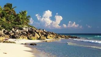 Beautiful Wild Beach: Stock Video