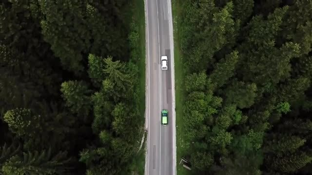 Cars Driving On Forest Road: Stock Video