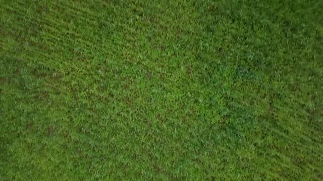 Grass field aerial Landscape Grass Aerial Shot Of Grass Field Stock Video Motion Array Aerial Shot Of Grass Field Stock Video Motion Array
