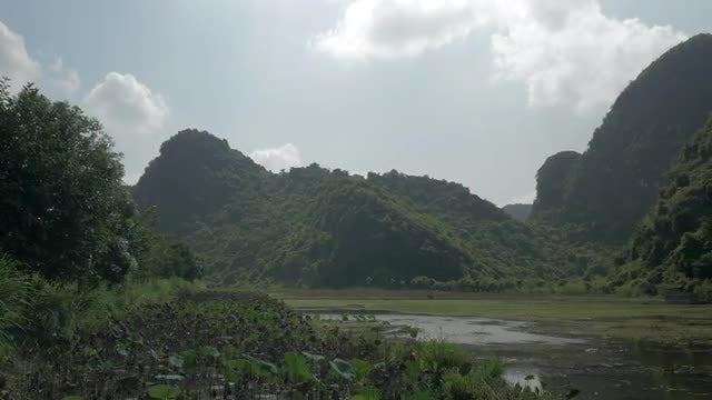 Wetlands And Cemetery In Vietnam: Stock Video