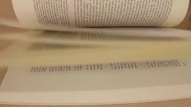 Flipping Through Book Pages: Stock Video