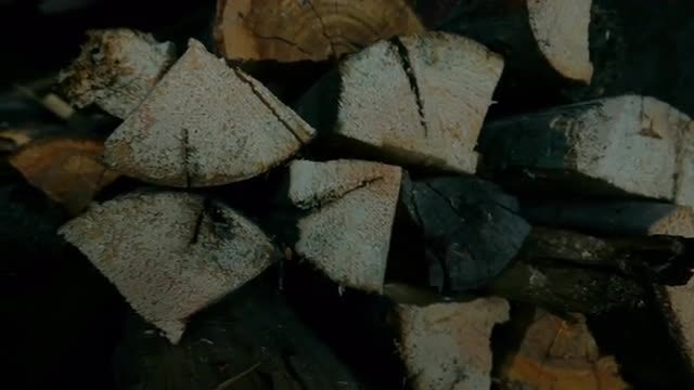 Stockpile Of Pieces Of Firewood: Stock Video