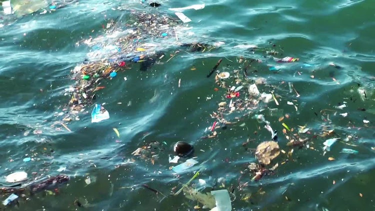 Ocean Trash Water Pollution Pack: Stock Video