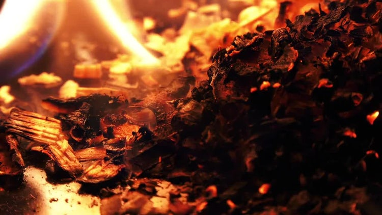 Close-up Of Wood Shavings Burning: Stock Video