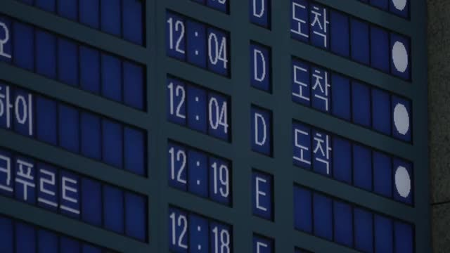 Multi-Lingual Arrivals Board: Stock Video