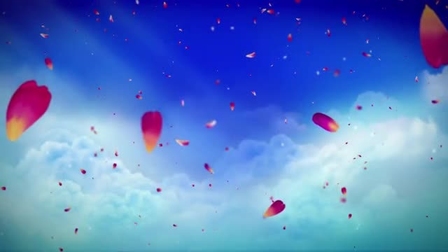 Heavenly Petals: Stock Motion Graphics