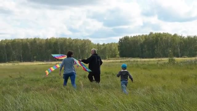 Family Members Flying A Kite: Stock Video
