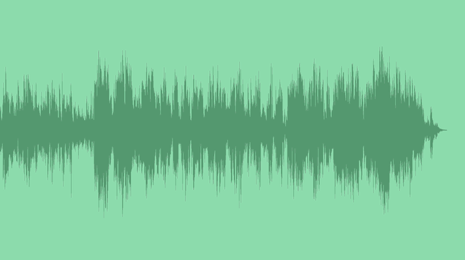 Morning In Forest: Royalty Free Music