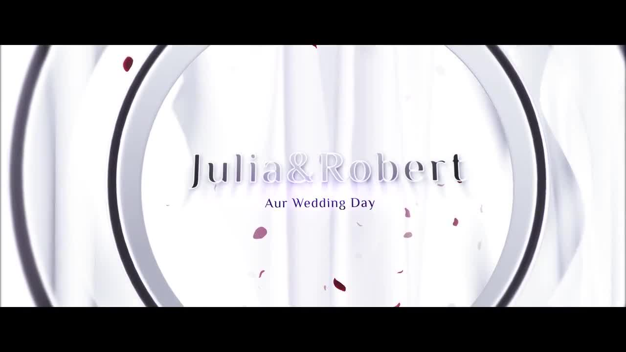 Wedding Opener - After Effects 88443