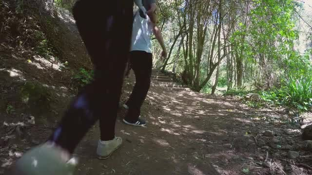 Couple Hiking With Happy Dog: Stock Video