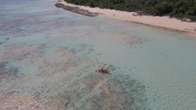 Aerial Of Kayaker In Tropics: Stock Video