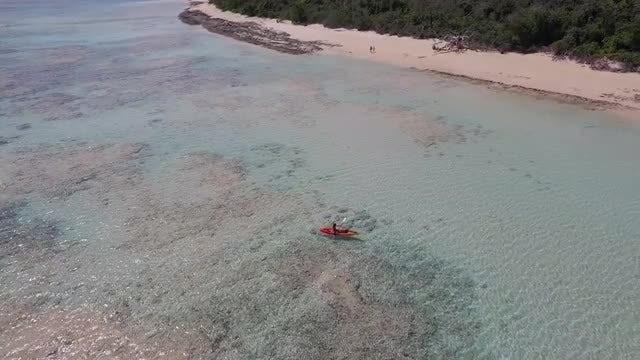 Aerial Of Kayaker In Tropics: Stock Video