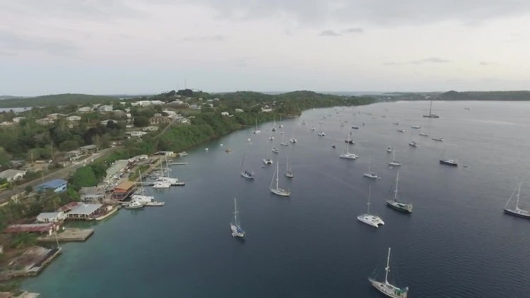 Aerial Shot Of A Harbor : Stock Video