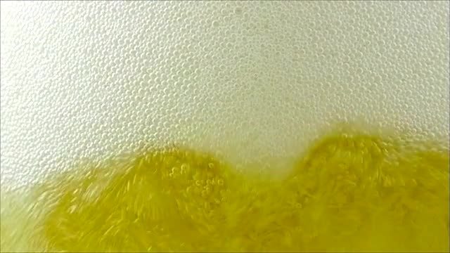 Fresh Beer Poured Into Glass: Stock Video
