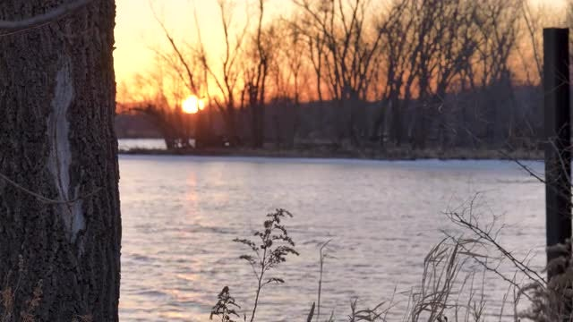 Beautiful Riverside At Sunset : Stock Video
