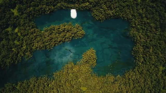 Lake In The Jungle: Stock Motion Graphics