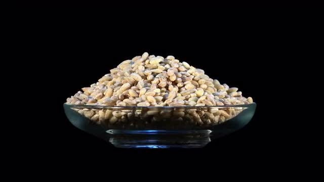 Bowl With Pearl Barley Rotating: Stock Video