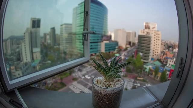 Time Lapse Of Busy Seoul : Stock Video