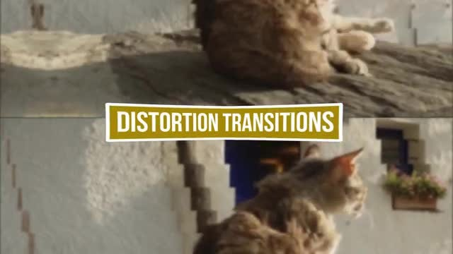 Distortion Transitions Pack: Premiere Pro Templates