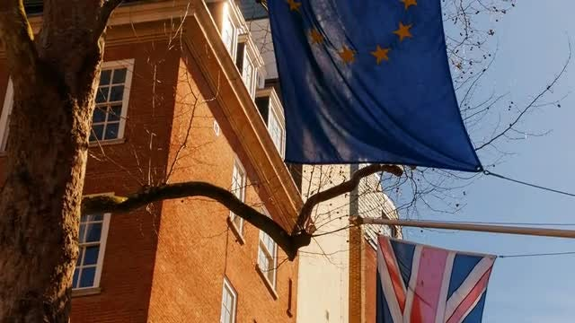 UK And EU Flags Flying: Stock Video
