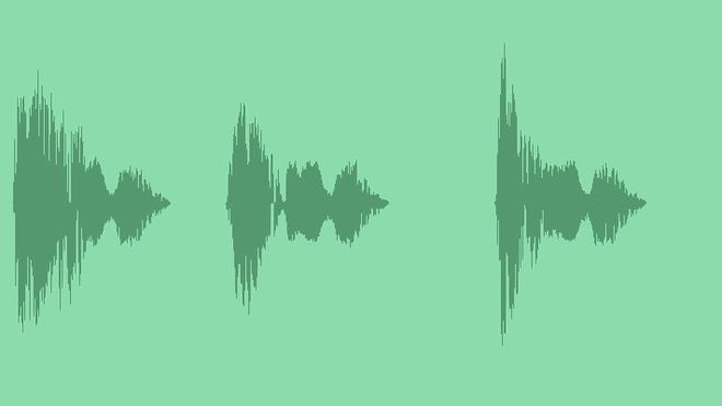 Raven: Sound Effects