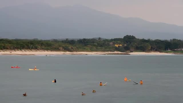 Surfers And Kayakers In Water: Stock Video