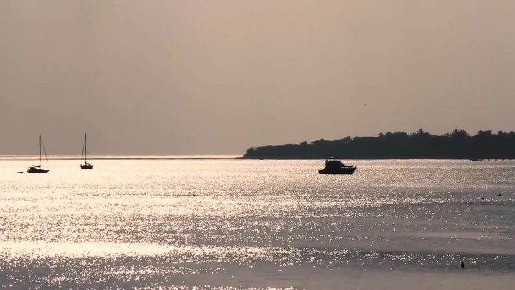 Wide Shot Of Calm Ocean: Stock Video