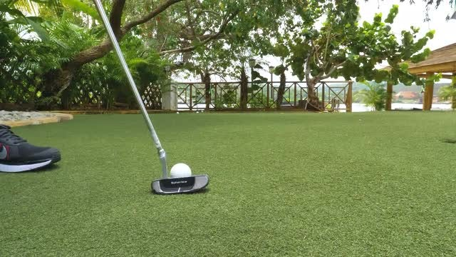 Slow Motion Putt On Backyard: Stock Video