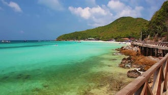 Coast Of Ko Lan: Stock Video