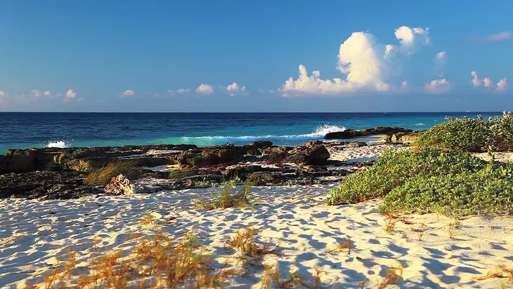 Scenic Beach: Stock Video