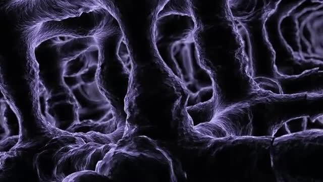 Microscopic Tissue Flyby: Stock Motion Graphics