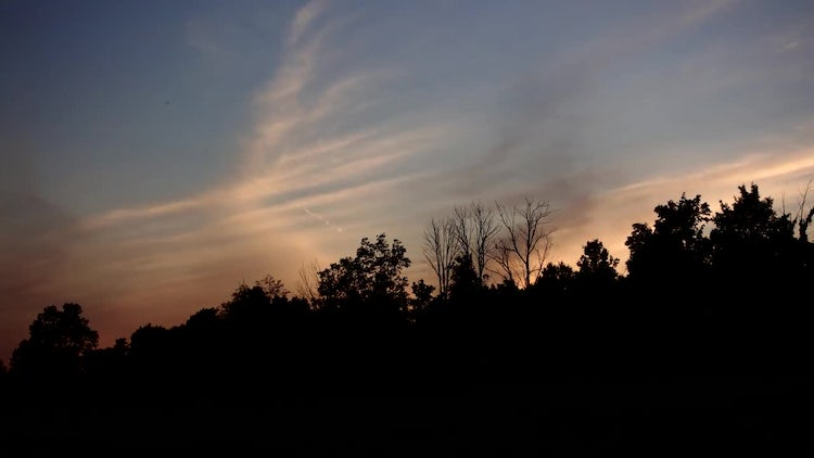 Sunset Sky Over Forest Silhouette : Stock Video