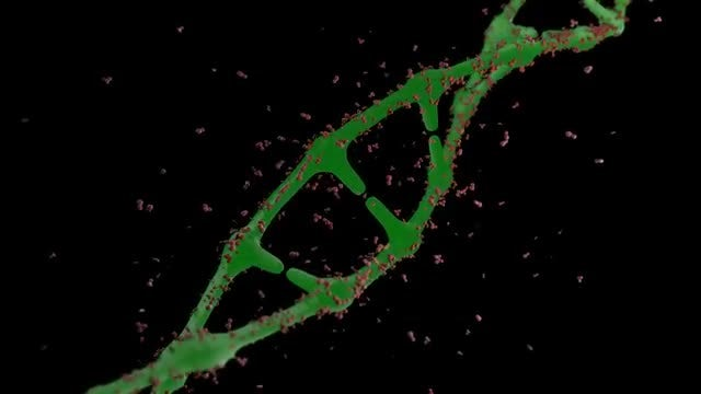 Green DNA Spinning: Stock Motion Graphics