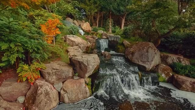 Wide Angle Shot Of Japanese Garden: Stock Video