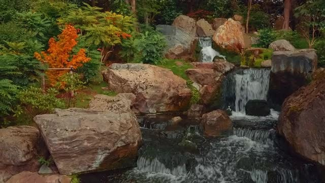 Exquisite Lush Japanese Garden: Stock Video