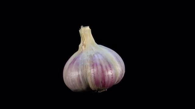 Upright Garlic Bulb Loop: Stock Video