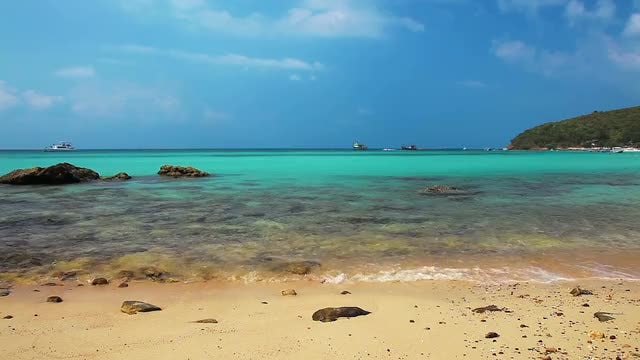 Beautiful Tropical Beach: Stock Video