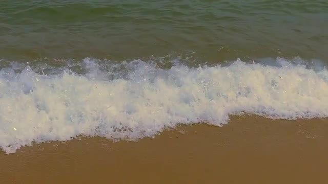 Waves Arrive At The Beach: Stock Video