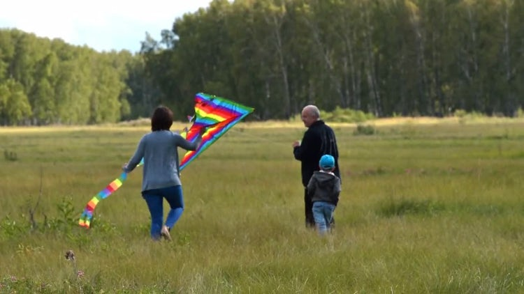 Family Members With Colorful Kite: Stock Video