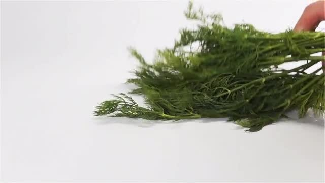 Green Dill On White Surface: Stock Video
