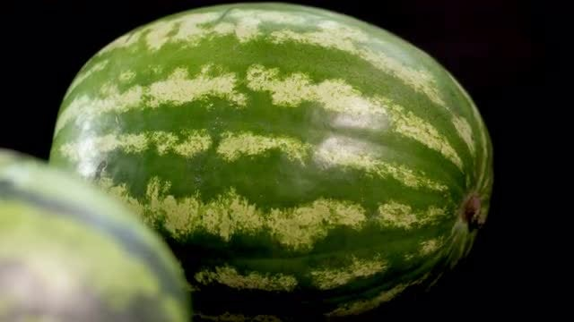 Two Watermelons : Stock Video